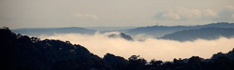 Classic Hawkesbury river fog splashes over Lion Island around 0915.